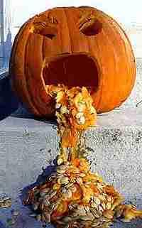 pumpkinkotz.jpg